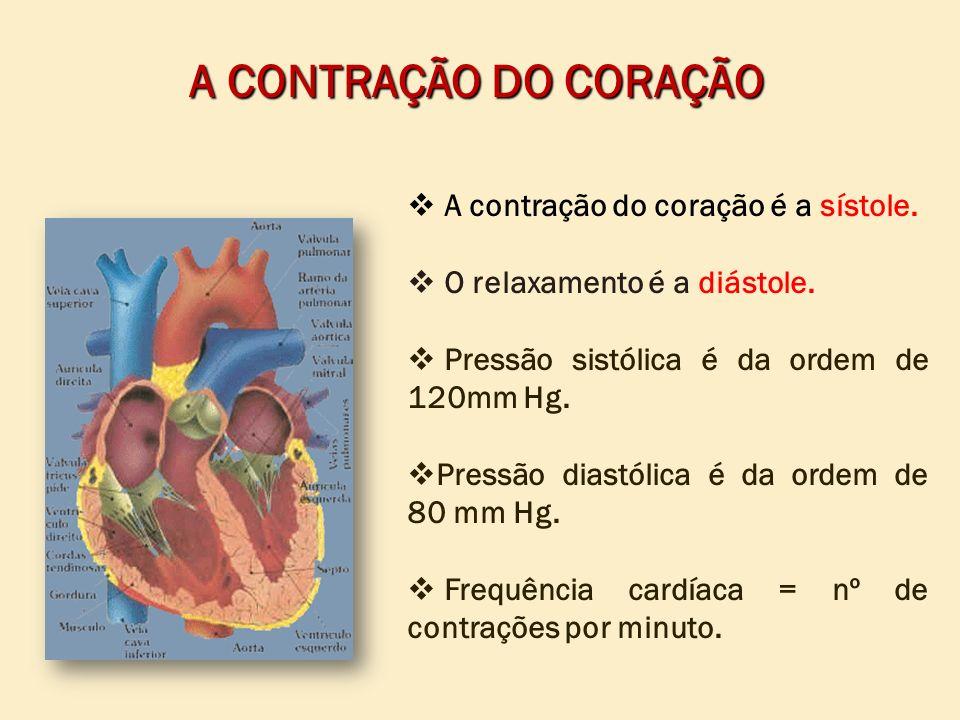 A contração do coração é a sístole. O relaxamento é a diástole. Pressão sistólica é da ordem de 120mm Hg. Pressão diastólica é da ordem de 80 mm Hg. F
