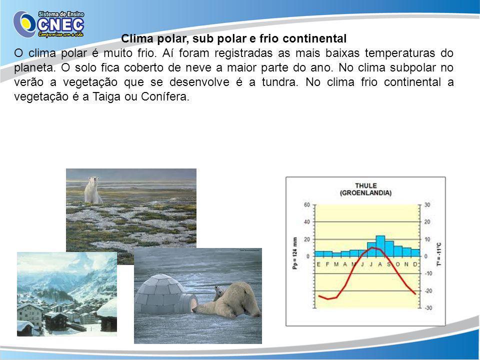 Clima polar, sub polar e frio continental O clima polar é muito frio. Aí foram registradas as mais baixas temperaturas do planeta. O solo fica coberto