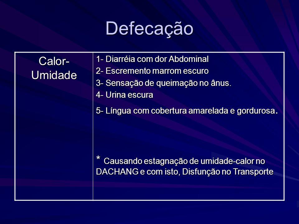 Defecação Calor- Umidade 1- Diarréia com dor Abdominal 2- Escremento marrom escuro 3- Sensação de queimação no ânus. 4- Urina escura 5- Língua com cob