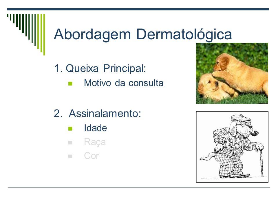 Abordagem Dermatológica 1. Queixa Principal: Motivo da consulta 2. Assinalamento: Idade Raça Cor