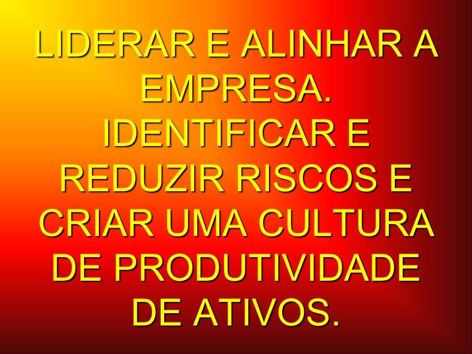LIDERAR E ALINHAR A EMPRESA. IDENTIFICAR E REDUZIR RISCOS E CRIAR UMA CULTURA DE PRODUTIVIDADE DE ATIVOS.