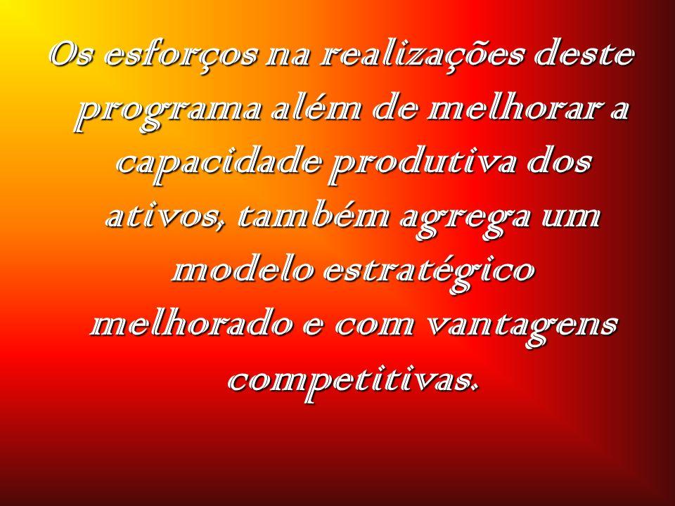 Os esforços na realizações deste programa além de melhorar a capacidade produtiva dos ativos, também agrega um modelo estratégico melhorado e com vant