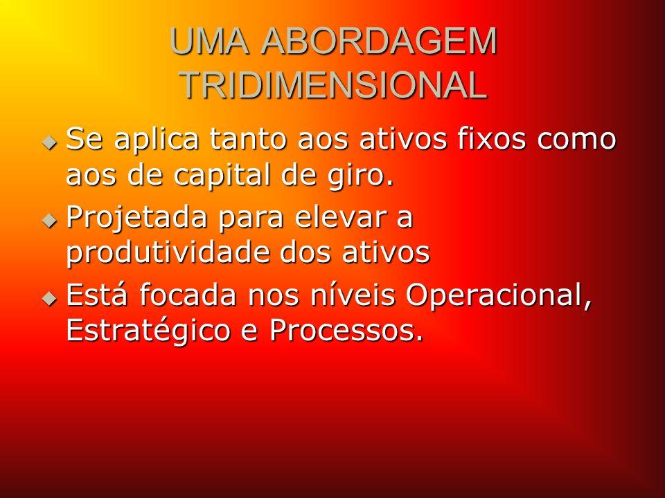 UMA ABORDAGEM TRIDIMENSIONAL Se aplica tanto aos ativos fixos como aos de capital de giro. Se aplica tanto aos ativos fixos como aos de capital de gir