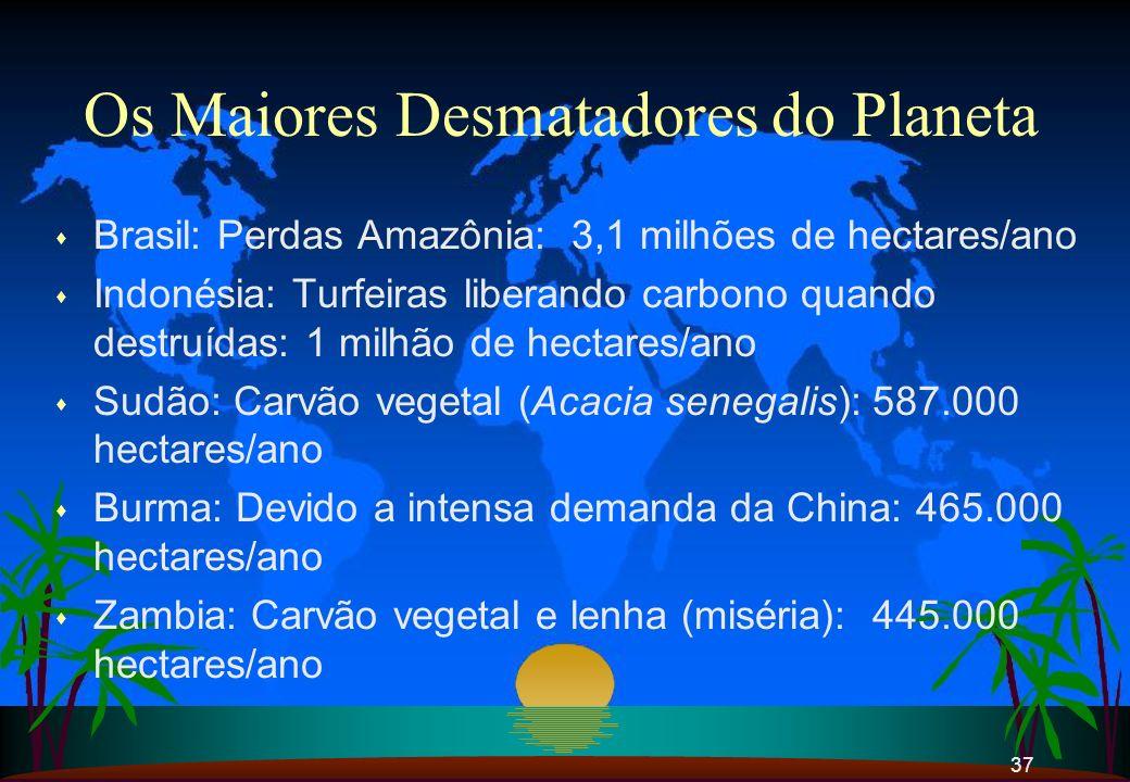 37 Os Maiores Desmatadores do Planeta s Brasil: Perdas Amazônia: 3,1 milhões de hectares/ano s Indonésia: Turfeiras liberando carbono quando destruída