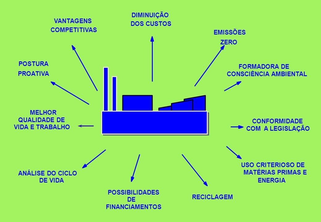 EMISSÕES ZERO USO CRITERIOSO DE MATÉRIAS PRIMAS E ENERGIA POSTURA PROATIVA ANÁLISE DO CICLO DE VIDA VANTAGENS COMPETITIVAS FORMADORA DE CONSCIÊNCIA AM
