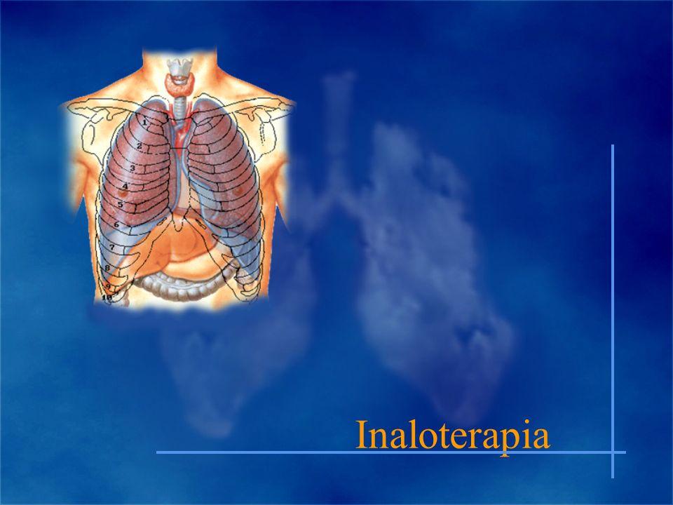 Inaloterapia