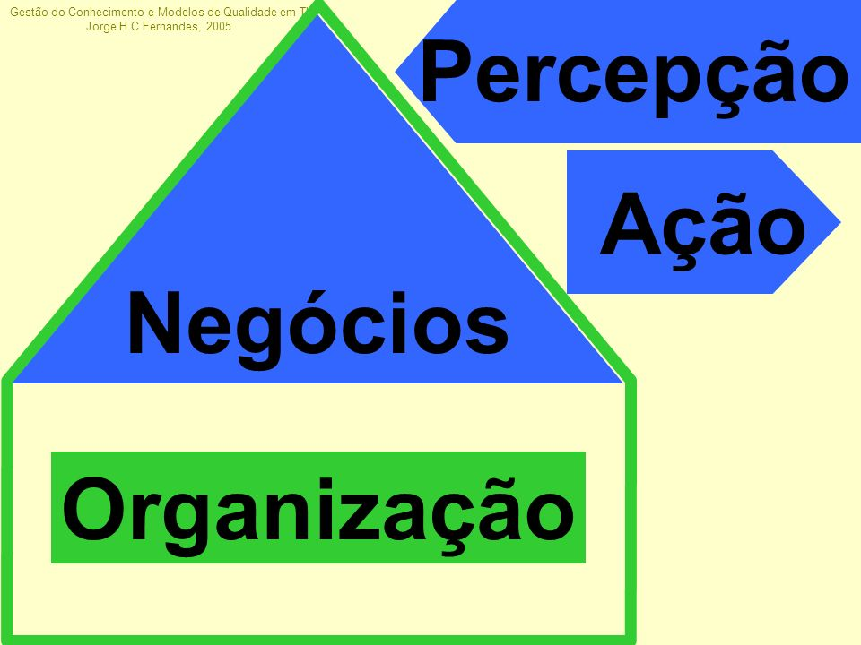 Gestão do Conhecimento e Modelos de Qualidade em TI Jorge H C Fernandes, 2005 Sistemas de informação são o sistema nervoso das organizações maduras