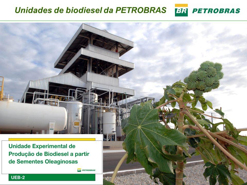 Usinas de Biodiesel Unidades Experimentais de Biodiesel Em operação desde 2006 Usinas Industriais (em construção) Entrarão em operação em junho de 2008 UEB01 Guamaré (RN) UEB02 Guamaré (RN) CANDEIAS (BA) MONTES CLAROS (MG) QUIXADÁ (CE) TOTAL Investimento Inicial R$ 10 milhões R$ 78 milhões R$ 73,4 milhões R$ 76 milhões R$ 227 milhões Capacidade De Produção Está sendo ampliada para 6,8 milhões de litros/ano 13,6 milhões de litros/ano 57 milhões de litros/ano 57 milhões de litros/ano 57 milhões de litros/ano 171 milhões de litros/ano Insumos Óleos Vegetais: Mamona Girassol Soja Óleos Vegetais: Mamona Girassol Soja Óleos vegetais: Mamona Girassol Soja Algodão Dendê Sebo bovino Óleos residuais (óleo de fritura usado) Óleos vegetais: Mamona Girassol Soja Algodão Sebo bovino Óleos residuais (óleo de fritura usado) Óleos vegetais: Mamona Girassol Algodão Soja Sebo bovino Óleos residuais (óleo de fritura usado) x-x-x-x-x-x-x Agricultura Familiar (potencial) 5.200 famílias30 mil famílias15 mil famílias25 mil famílias 70 mil famílias Unidades de biodiesel da PETROBRAS