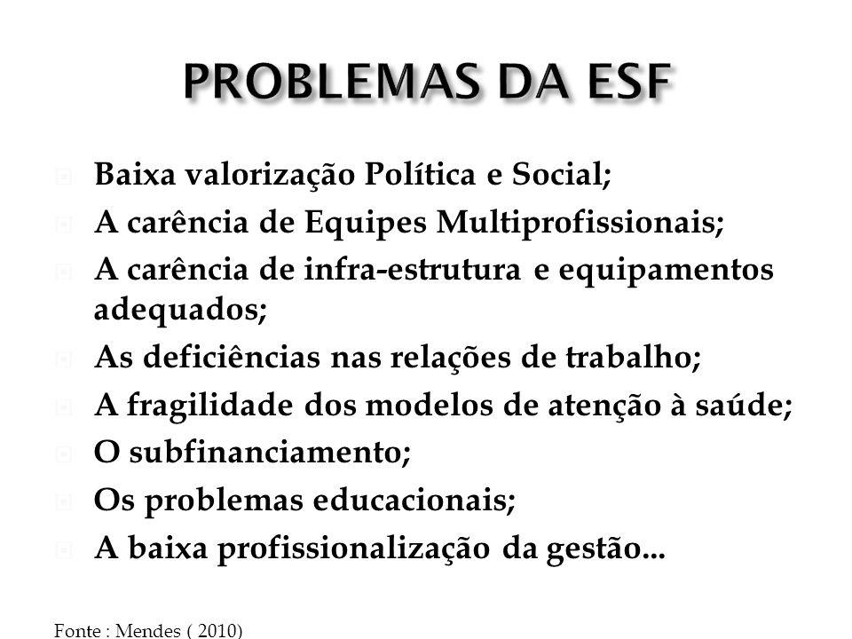 Baixa valorização Política e Social; A carência de Equipes Multiprofissionais; A carência de infra-estrutura e equipamentos adequados; As deficiências