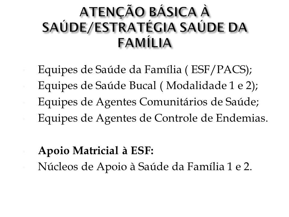 Equipes de Saúde da Família ( ESF/PACS); Equipes de Saúde Bucal ( Modalidade 1 e 2); Equipes de Agentes Comunitários de Saúde; Equipes de Agentes de C