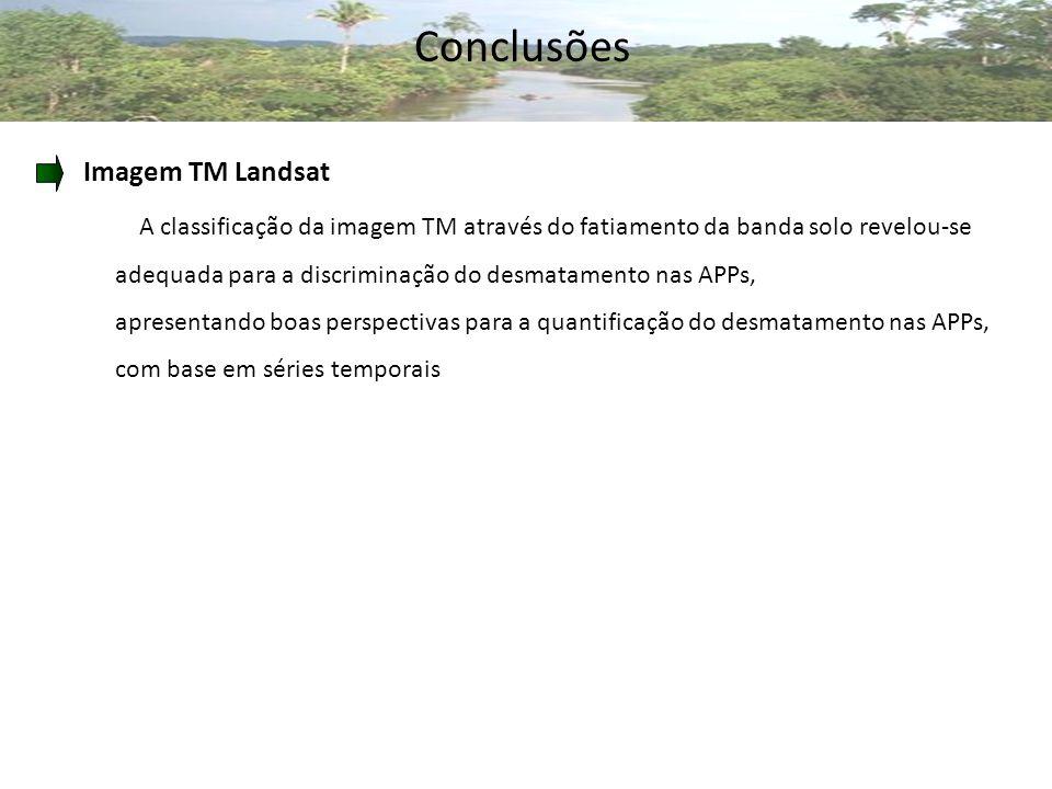Conclusões Imagem TM Landsat A classificação da imagem TM através do fatiamento da banda solo revelou-se adequada para a discriminação do desmatamento nas APPs, apresentando boas perspectivas para a quantificação do desmatamento nas APPs, com base em séries temporais