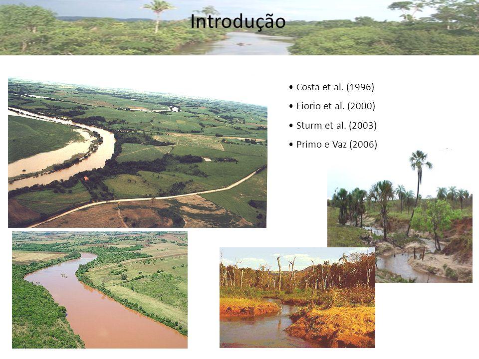 Costa et al. (1996) Fiorio et al. (2000) Sturm et al. (2003) Primo e Vaz (2006) Introdução