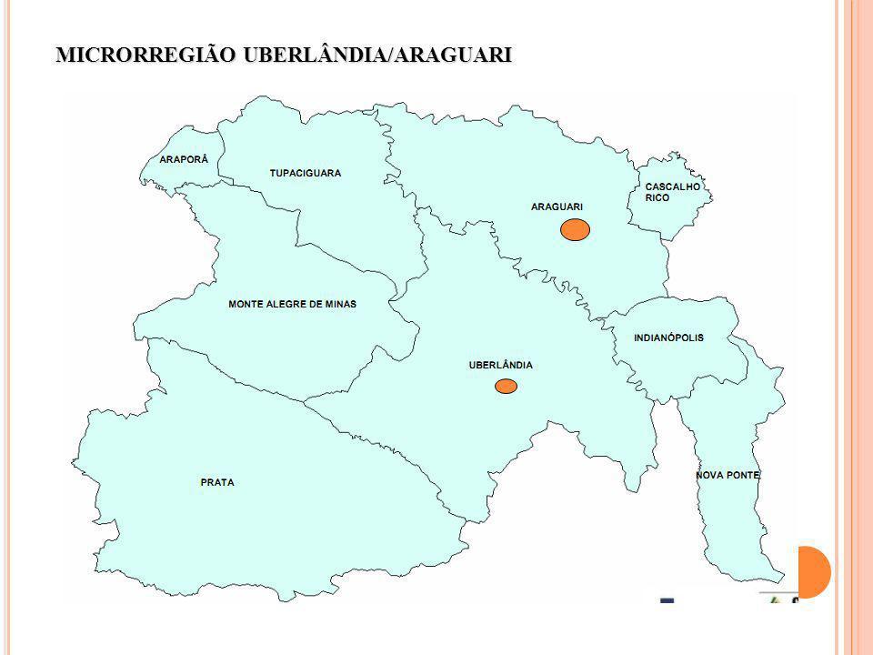 MICRORREGIÃO UBERLÂNDIA/ARAGUARI