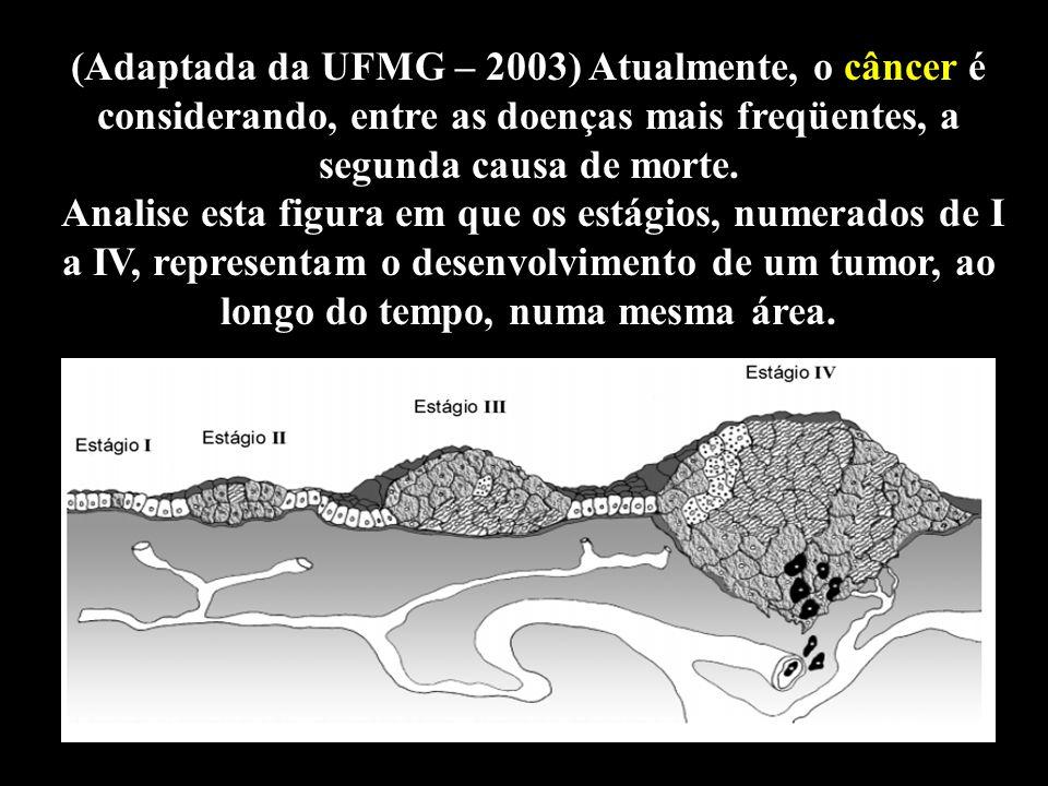 Professor: Deiber (Adaptada da UFMG – 2003) Atualmente, o câncer é considerando, entre as doenças mais freqüentes, a segunda causa de morte. Analise e