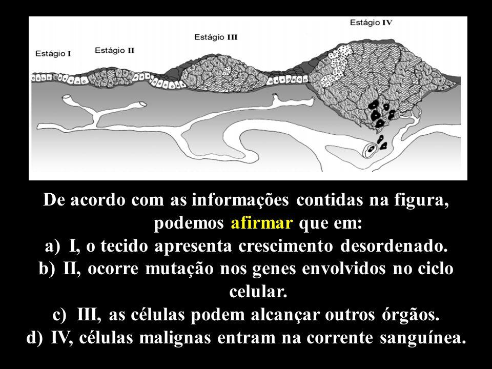 Professor: Deiber De acordo com as informações contidas na figura, podemos afirmar que em: a)I, o tecido apresenta crescimento desordenado. b)II, ocor