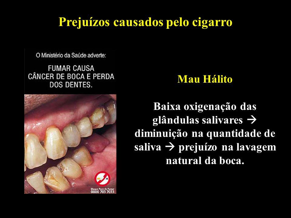 Professor: Deiber Prejuízos causados pelo cigarro Mau Hálito Baixa oxigenação das glândulas salivares diminuição na quantidade de saliva prejuízo na l