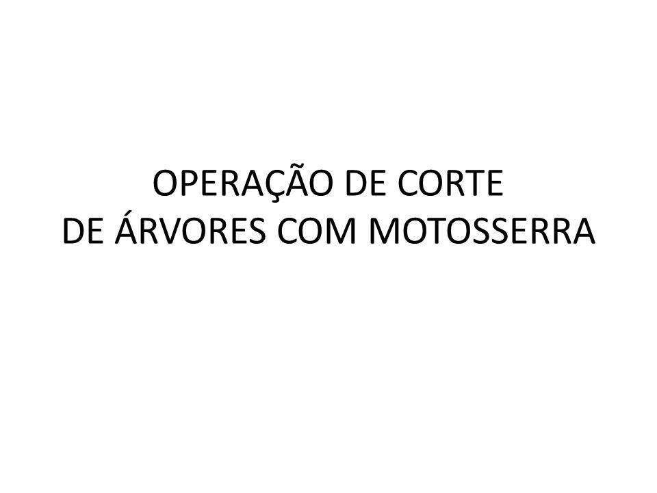 OPERAÇÃO DE CORTE DE ÁRVORES COM MOTOSSERRA