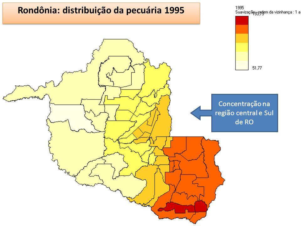 12 Rondônia: distribuição da pecuária 1995 Concentração na região central e Sul de RO