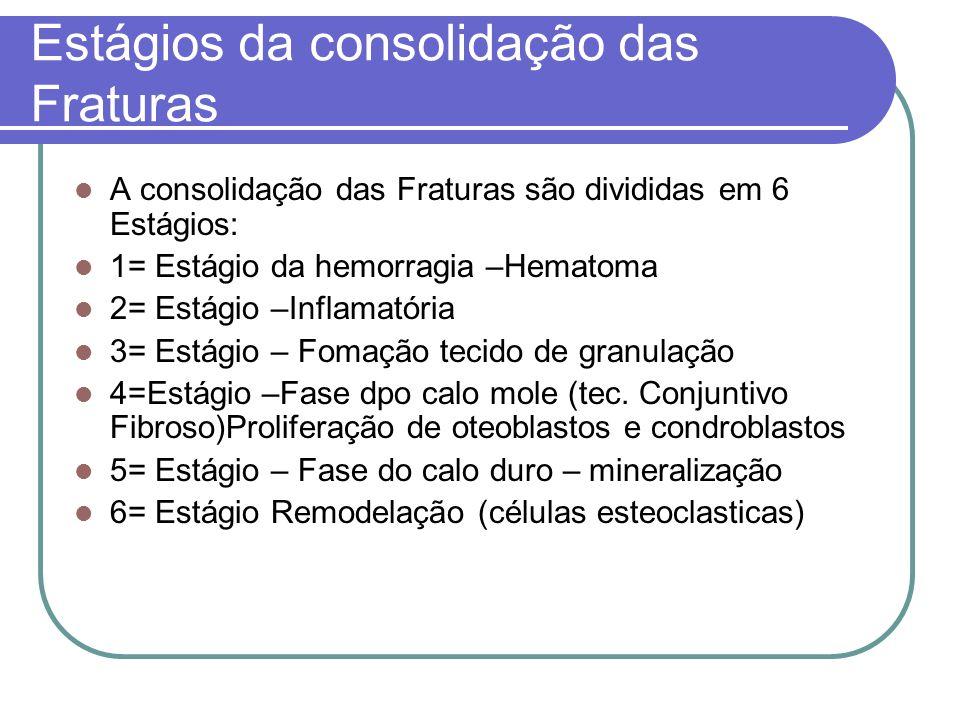 Estágios da consolidação das Fraturas A consolidação das Fraturas são divididas em 6 Estágios: 1= Estágio da hemorragia –Hematoma 2= Estágio –Inflamat