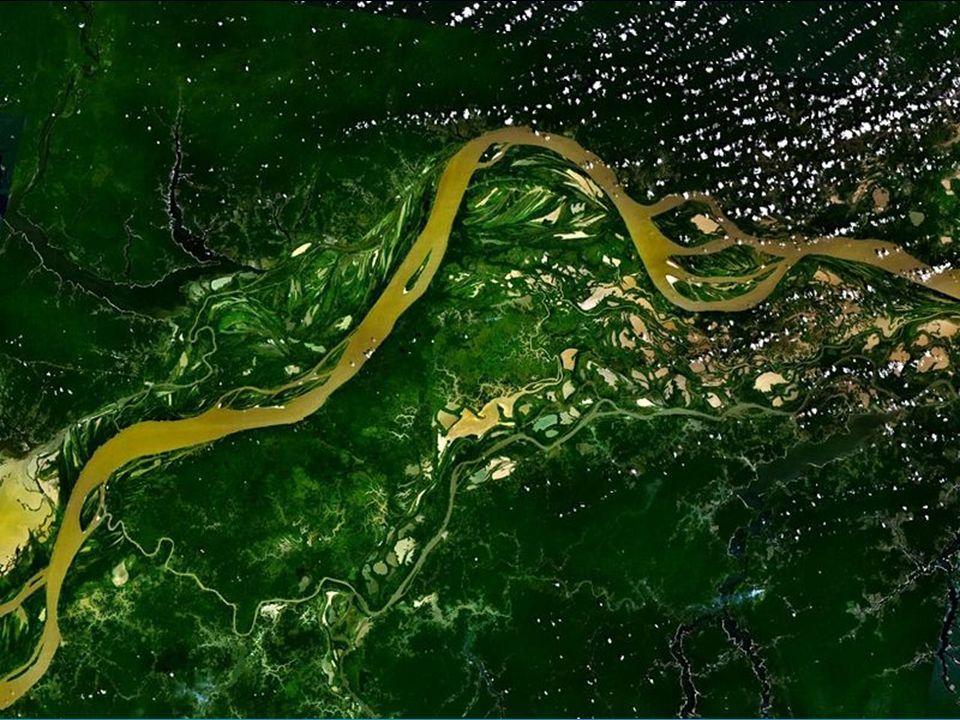A Região Hidrográfica do Paraguai inclui uma das maiores extensões úmidas contínuas do planeta, o Pantanal.
