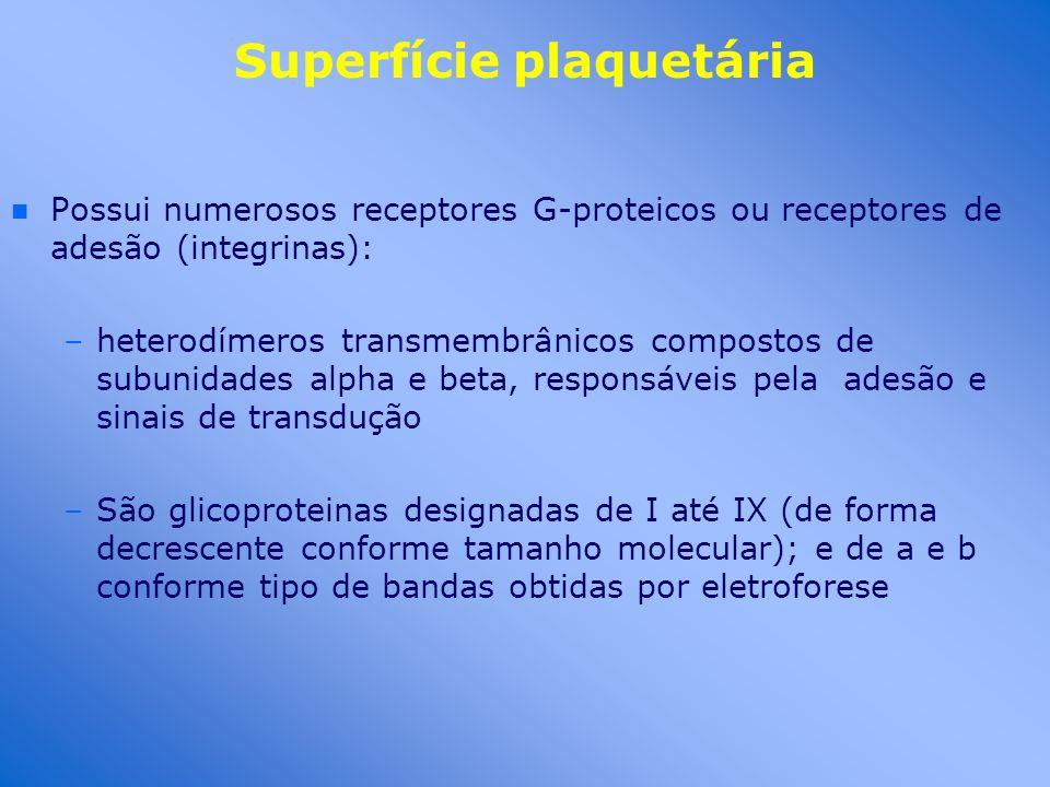 Superfície plaquetária n n Possui numerosos receptores G-proteicos ou receptores de adesão (integrinas): –heterodímeros transmembrânicos compostos de