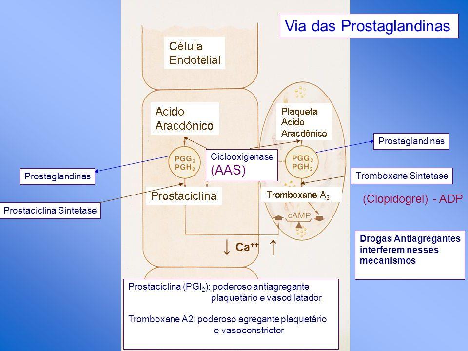 Drogas Antiagregantes interferem nesses mecanismos Via das Prostaglandinas Ciclooxigenase (AAS) Prostaglandinas Prostaciclina Sintetase Ca ++ Prostagl