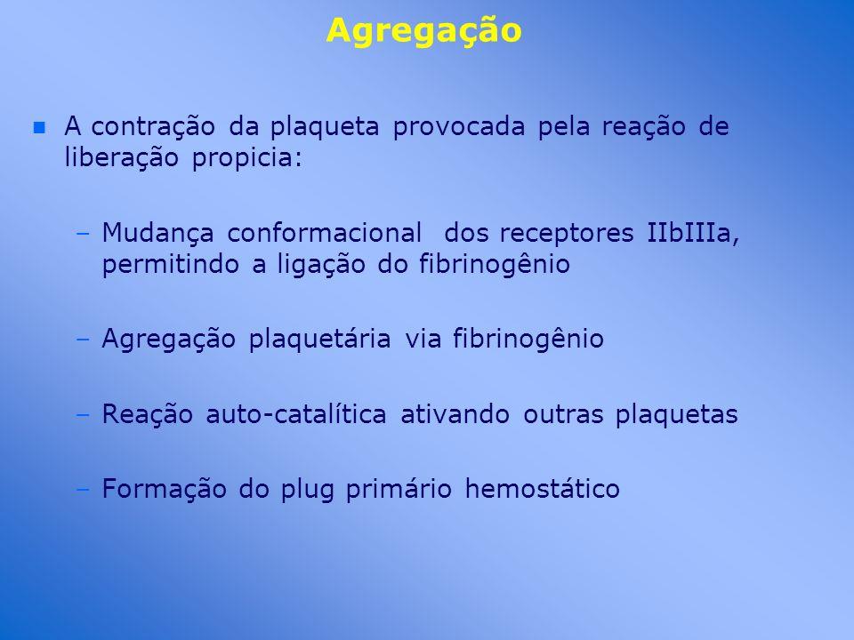Agregação n n A contração da plaqueta provocada pela reação de liberação propicia: –Mudança conformacional dos receptores IIbIIIa, permitindo a ligaçã
