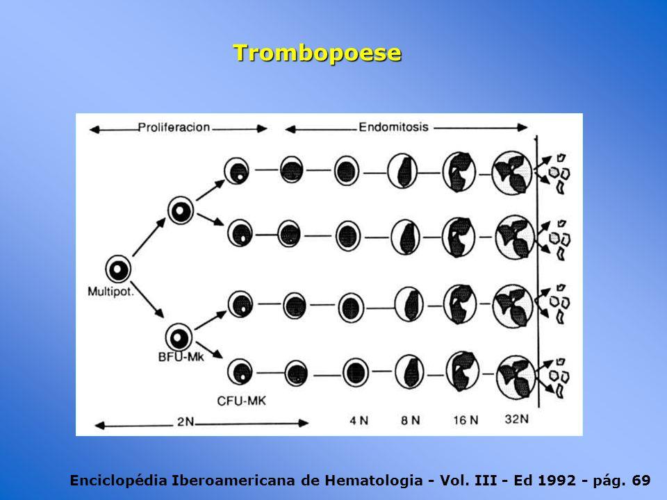 Enciclopédia Iberoamericana de Hematologia - Vol. III - Ed 1992 - pág. 69 Trombopoese