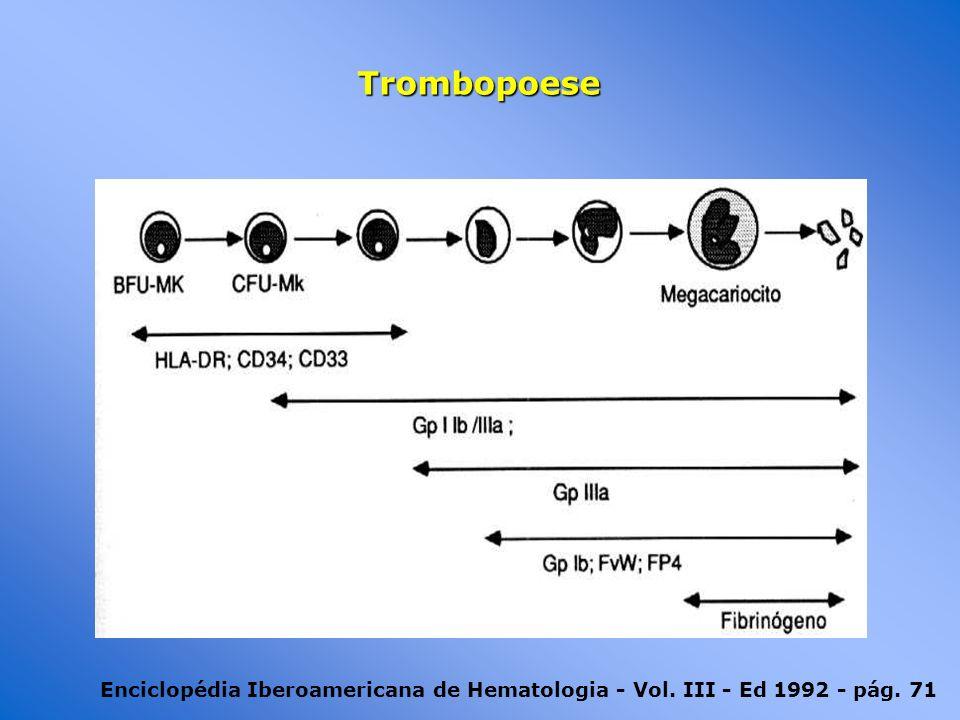 Enciclopédia Iberoamericana de Hematologia - Vol. III - Ed 1992 - pág. 71 Trombopoese