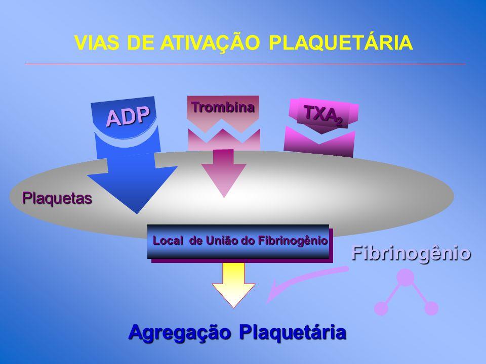 Agregação Plaquetária Fibrinogênio TXA 2 ADP Trombina Local de União do Fibrinogênio Plaquetas VIAS DE ATIVAÇÃO PLAQUETÁRIA