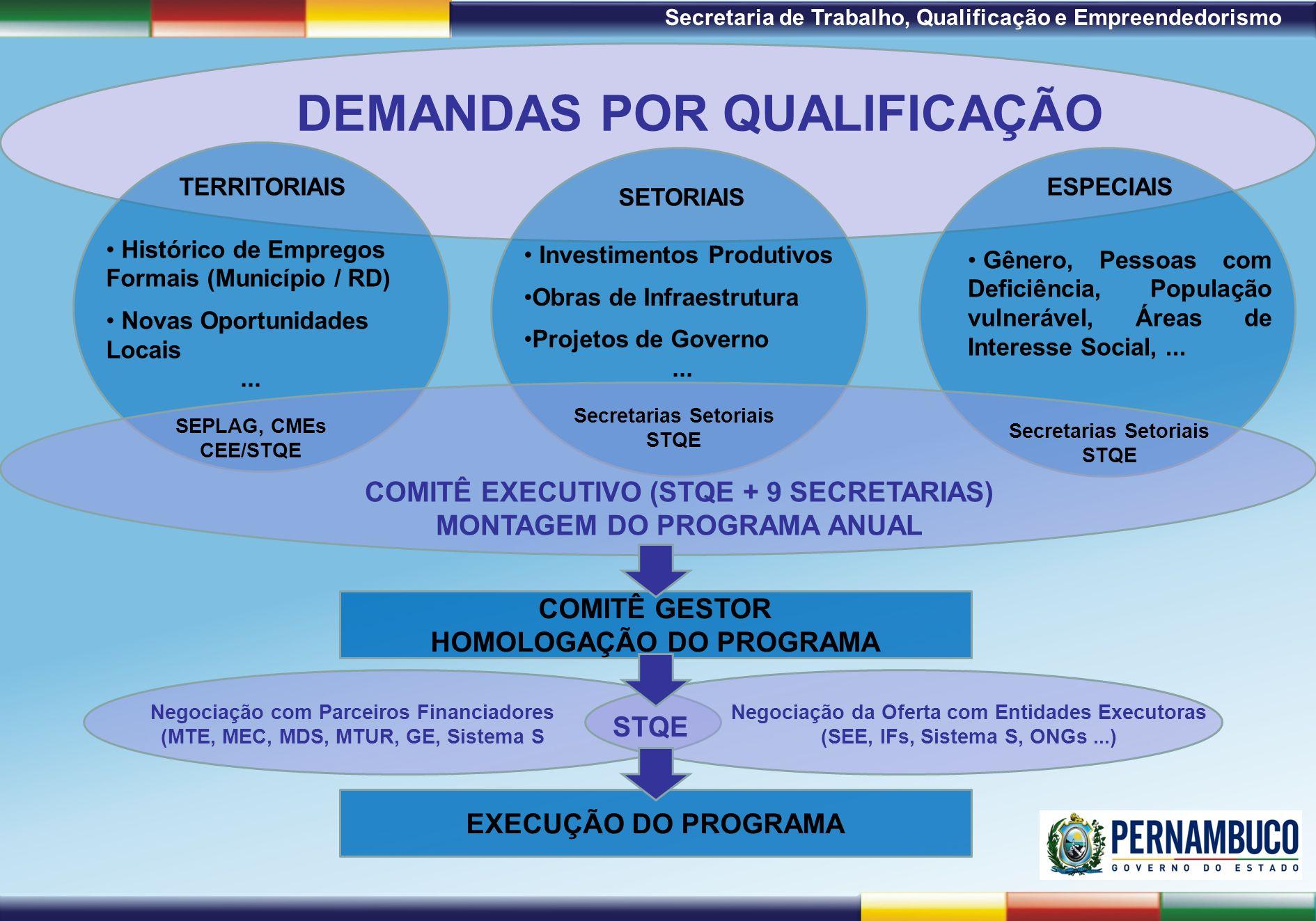 1ª Reunião de Monitoramento 2009 – 31/03/09 Secretaria de Trabalho, Qualificação e Empreendedorismo EXECUÇÃO DO PROGRAMA DEMANDAS POR QUALIFICAÇÃO COM