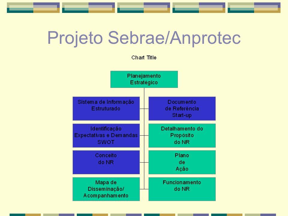 O Processo do Projeto Sebrae/Anprotec NR Sistema de Informação Doc.