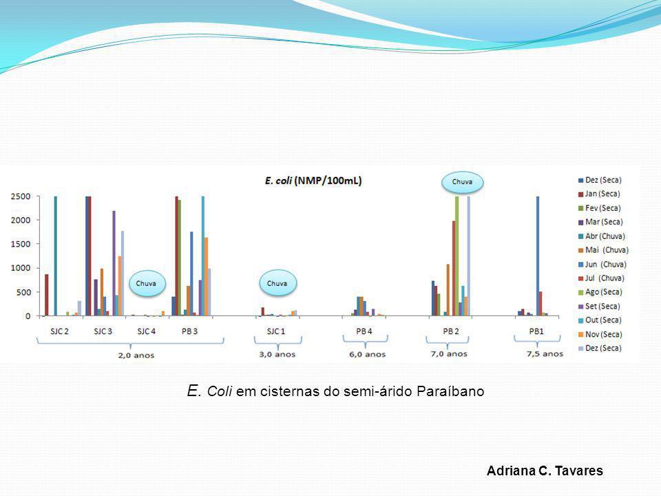 E. Coli em cisternas do semi-árido Paraíbano Adriana C. Tavares