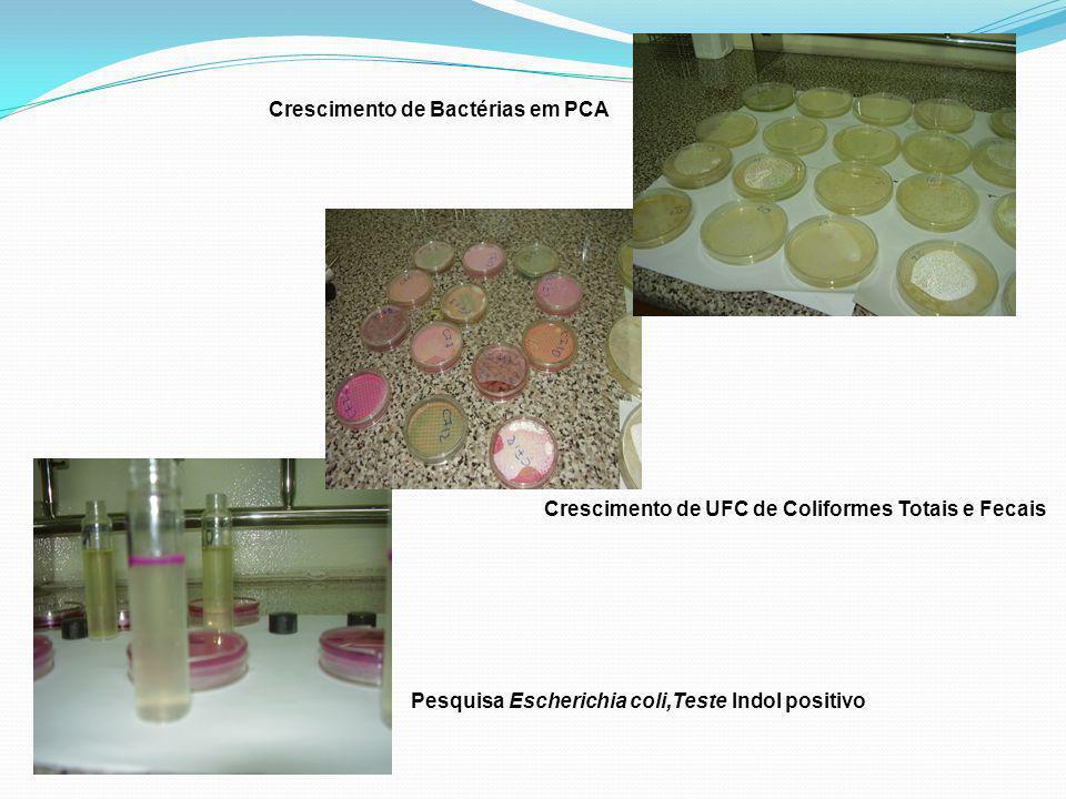 Pesquisa Escherichia coli,Teste Indol positivo Crescimento de UFC de Coliformes Totais e Fecais Crescimento de Bactérias em PCA