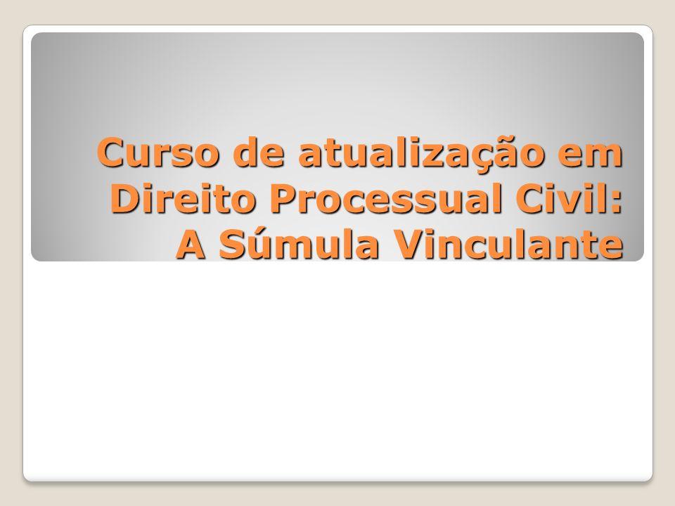 Curso de atualização em Direito Processual Civil: A Súmula Vinculante