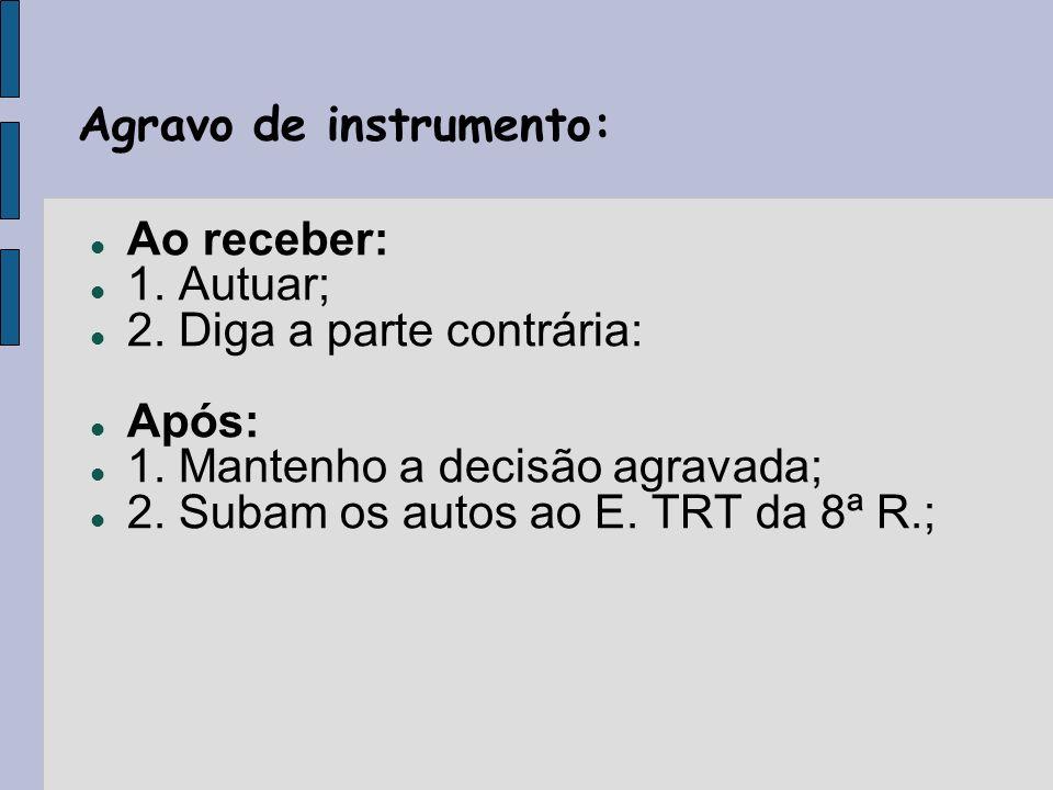 Agravo de instrumento: Ao receber: 1. Autuar; 2. Diga a parte contrária: Após: 1.