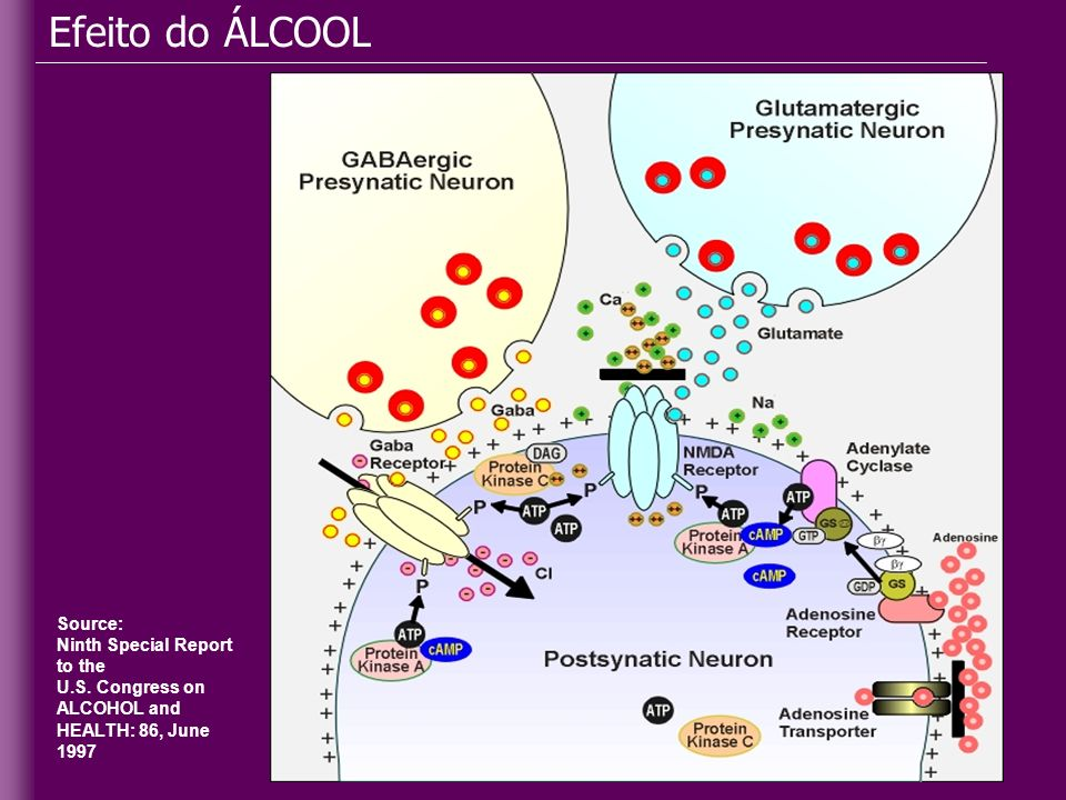 Source: Ninth Special Report to the U.S. Congress on ALCOHOL and HEALTH: 86, June 1997 Efeito do ÁLCOOL