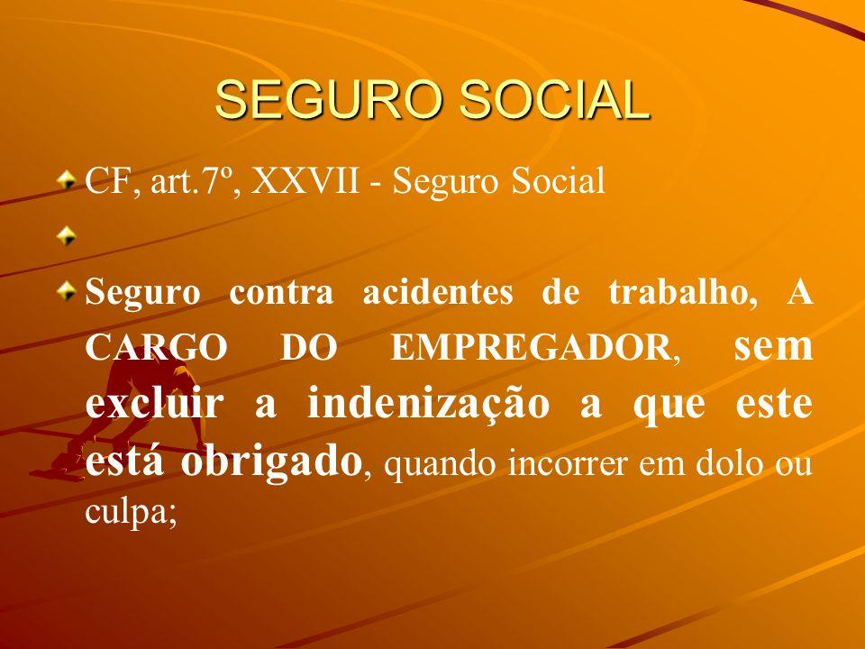 SEGURO SOCIAL CF, art.7º, XXVII - Seguro Social Seguro contra acidentes de trabalho, A CARGO DO EMPREGADOR, sem excluir a indenização a que este está