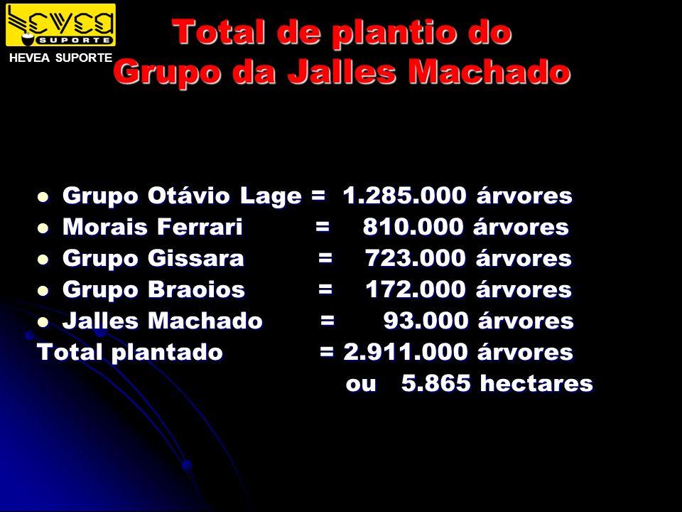 Total de plantio do Grupo da Jalles Machado Grupo Otávio Lage = 1.285.000 árvores Grupo Otávio Lage = 1.285.000 árvores Morais Ferrari = 810.000 árvor