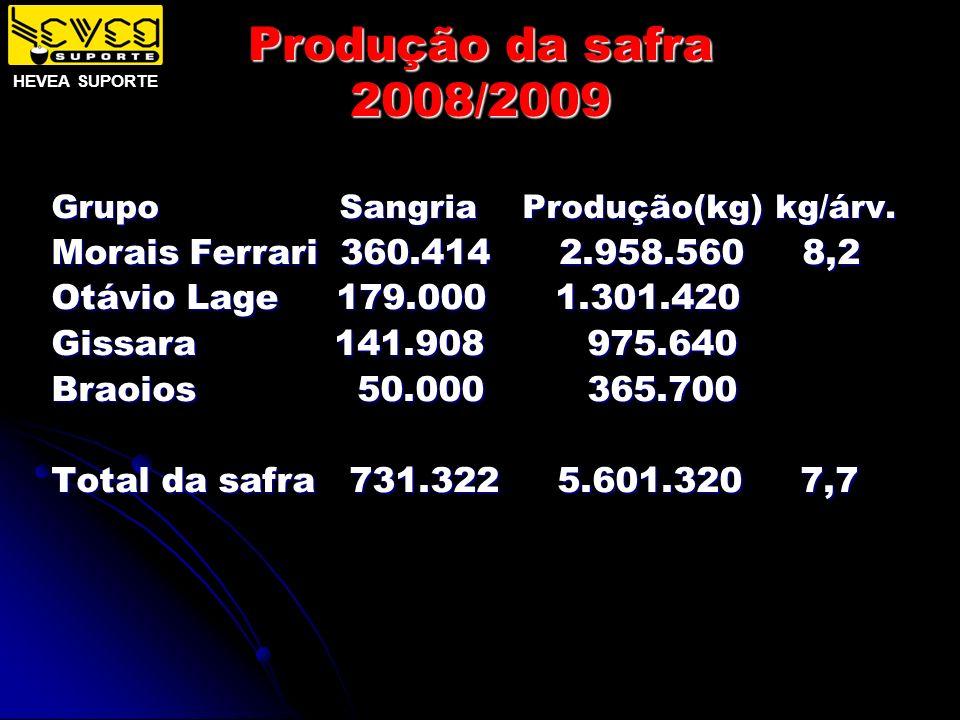 Produção da safra 2008/2009 Grupo Sangria Produção(kg) kg/árv. Morais Ferrari 360.414 2.958.560 8,2 Otávio Lage 179.000 1.301.420 Gissara 141.908 975.
