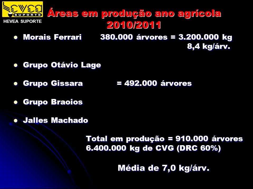 Áreas em produção ano agrícola 2010/2011 Morais Ferrari 380.000 árvores = 3.200.000 kg Morais Ferrari 380.000 árvores = 3.200.000 kg 8,4 kg/árv. 8,4 k