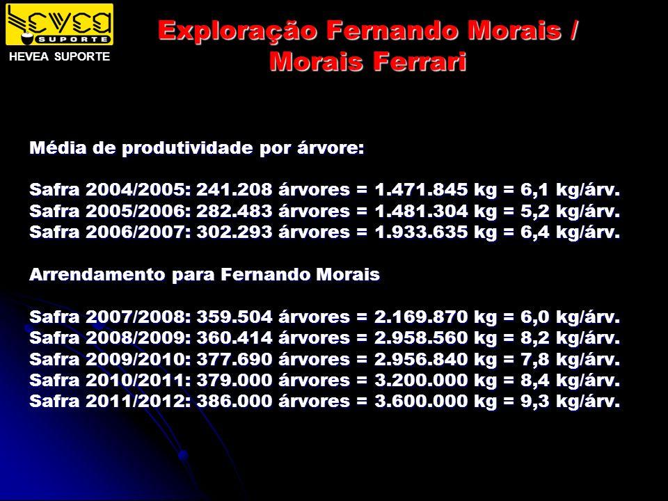 Exploração Fernando Morais / Morais Ferrari Média de produtividade por árvore: Safra 2004/2005: 241.208 árvores = 1.471.845 kg = 6,1 kg/árv. Safra 200