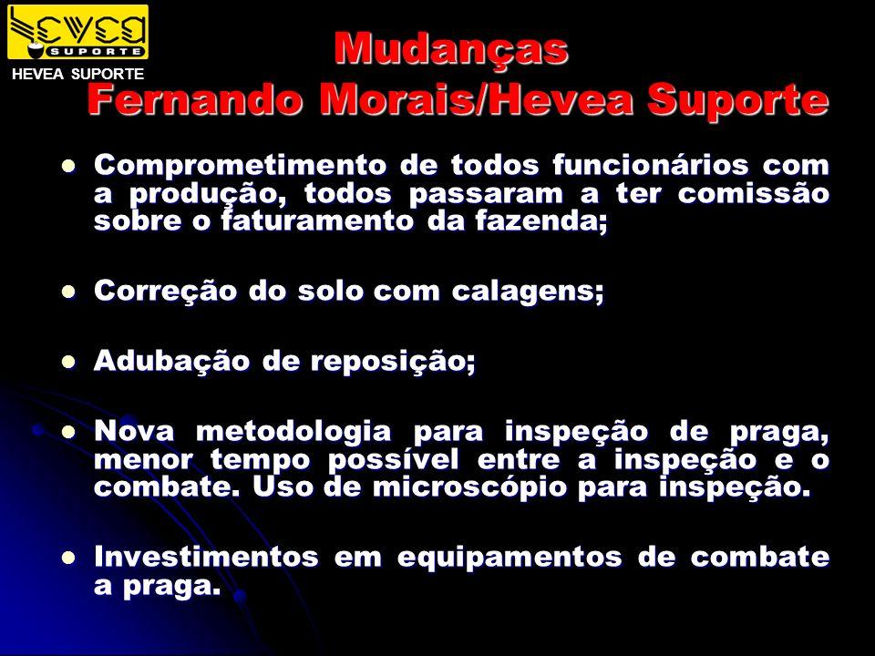 Mudanças Fernando Morais/Hevea Suporte Comprometimento de todos funcionários com a produção, todos passaram a ter comissão sobre o faturamento da faze