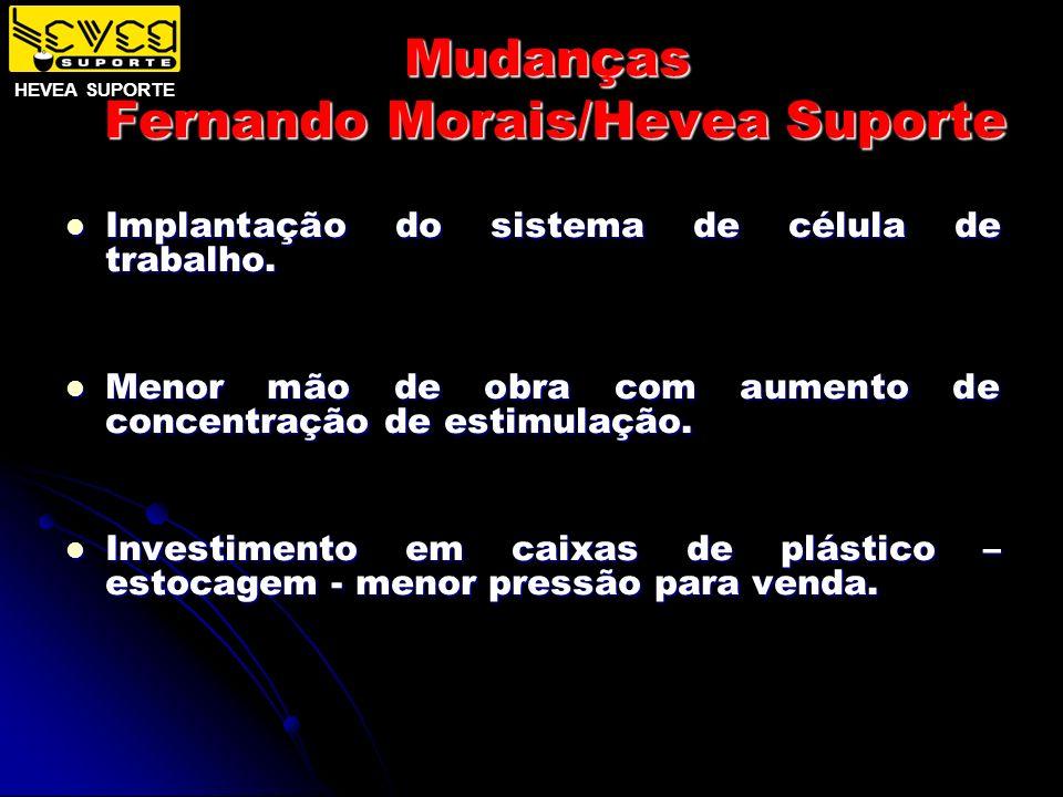 Mudanças Fernando Morais/Hevea Suporte Implantação do sistema de célula de trabalho. Implantação do sistema de célula de trabalho. Menor mão de obra c