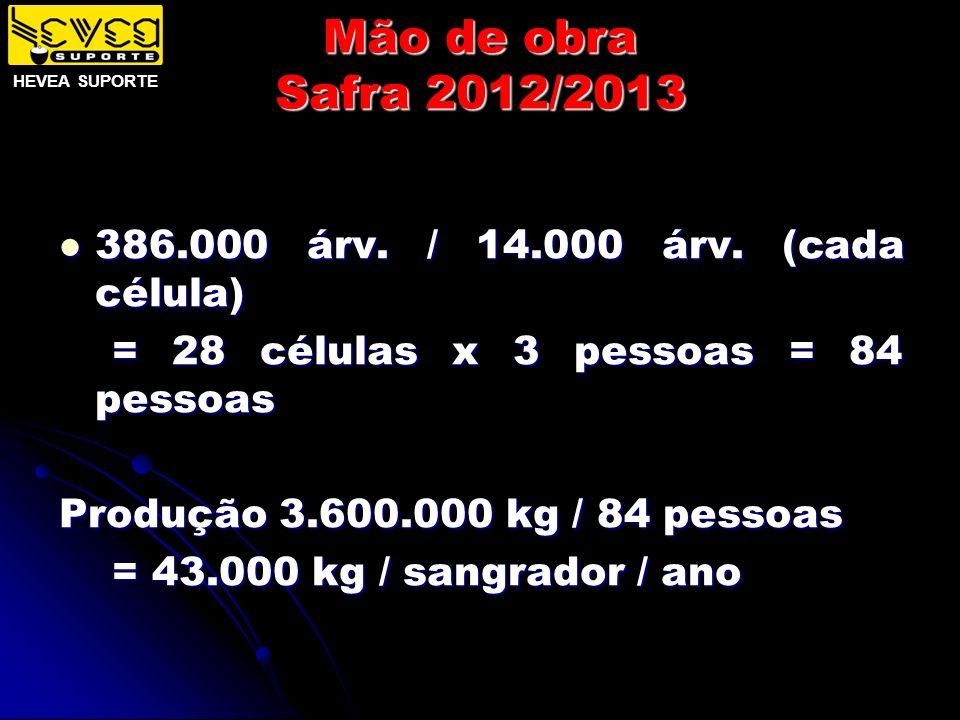 Mão de obra Safra 2012/2013 386.000 árv. / 14.000 árv. (cada célula) 386.000 árv. / 14.000 árv. (cada célula) = 28 células x 3 pessoas = 84 pessoas =