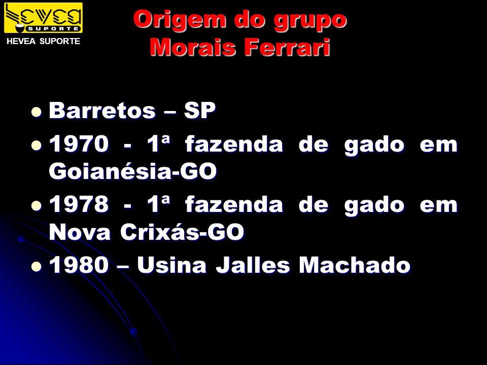 Origem do grupo Morais Ferrari Barretos – SP Barretos – SP 1970 - 1ª fazenda de gado em Goianésia-GO 1970 - 1ª fazenda de gado em Goianésia-GO 1978 -