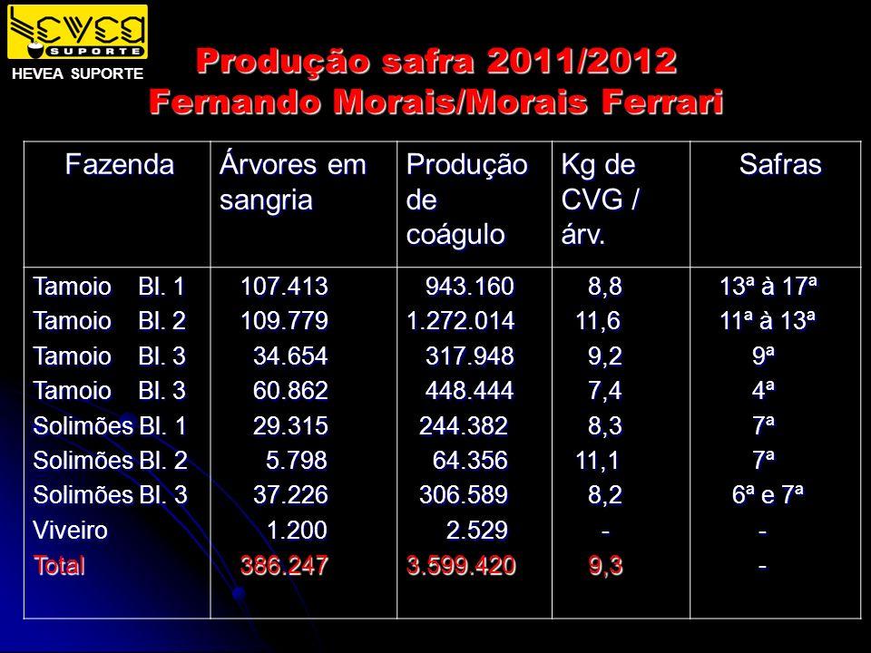 Produção safra 2011/2012 Fernando Morais/Morais Ferrari HEVEA SUPORTE Fazenda Fazenda Árvores em sangria Produção de coágulo Kg de CVG / árv. Safras S