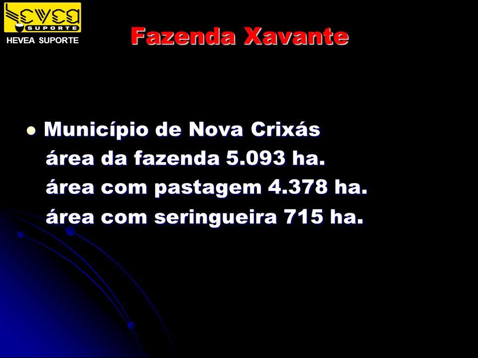 Fazenda Xavante Município de Nova Crixás Município de Nova Crixás área da fazenda 5.093 ha. área da fazenda 5.093 ha. área com pastagem 4.378 ha. área