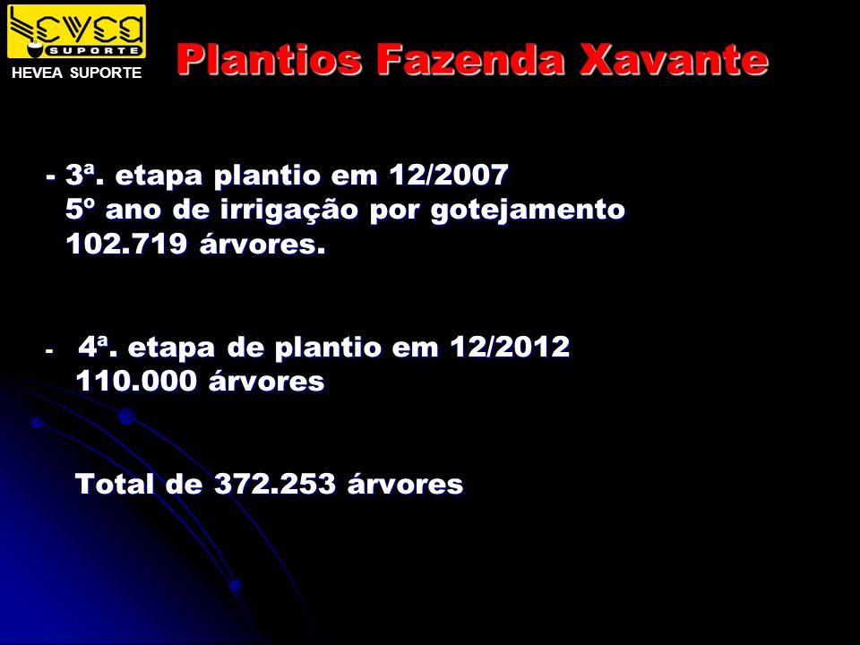 Plantios Fazenda Xavante - 3ª. etapa plantio em 12/2007 5º ano de irrigação por gotejamento 5º ano de irrigação por gotejamento 102.719 árvores. 102.7