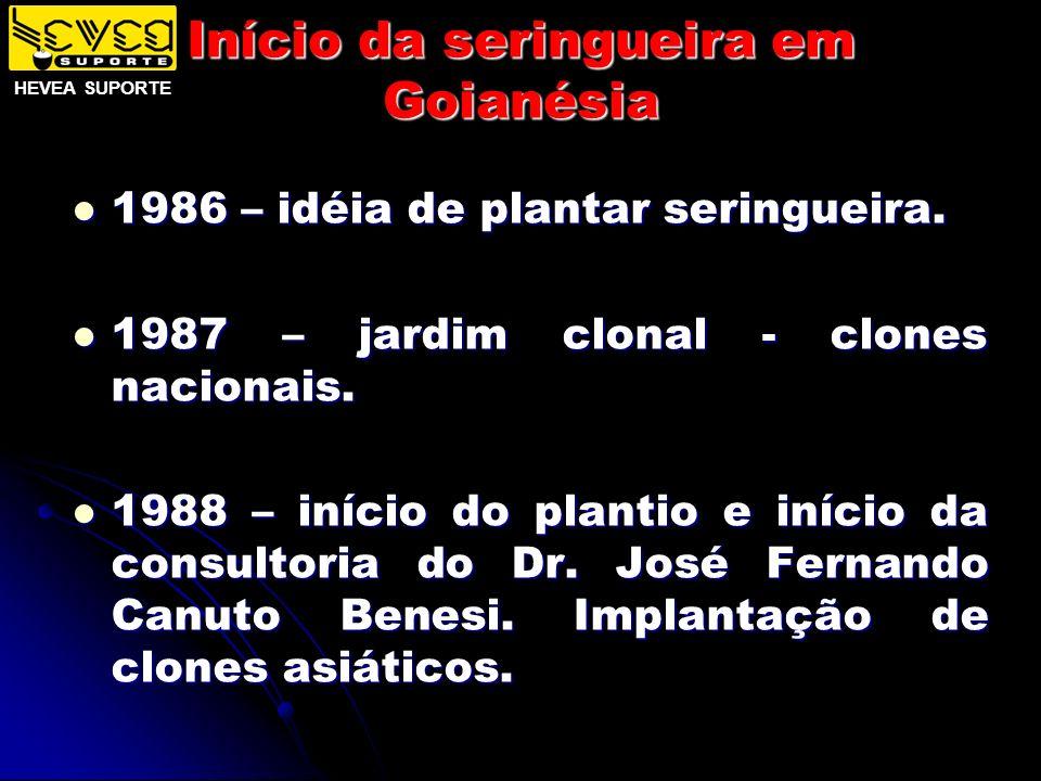 Início da seringueira em Goianésia 1986 – idéia de plantar seringueira. 1986 – idéia de plantar seringueira. 1987 – jardim clonal - clones nacionais.